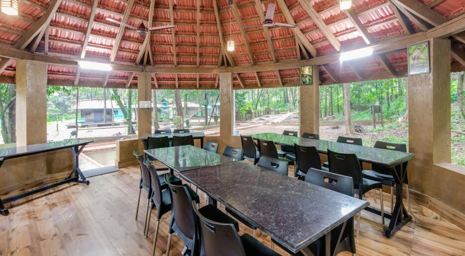 Anejhari Butterfly Camp