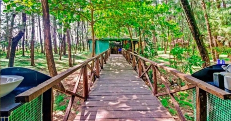 Devbagh Beach Resort By Jungle Lodges & Resorts